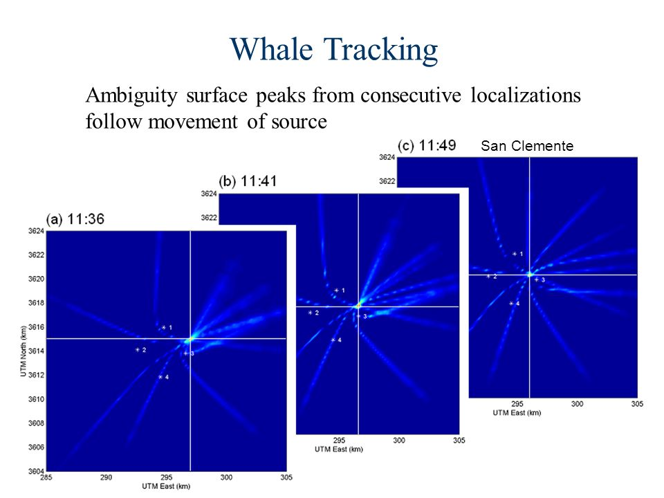 Whale Tracking Ambiguity surface peaks from consecutive localizations follow movement of source San Clemente