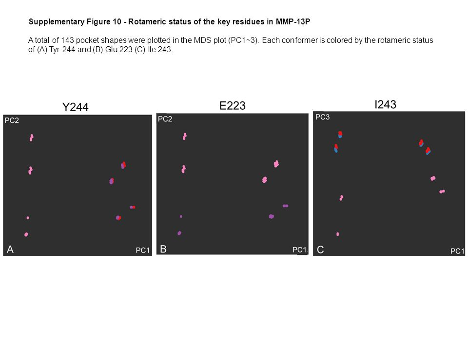 Supplementary Figure 10 - Rotameric status of the key residues in MMP-13P A total of 143 pocket shapes were plotted in the MDS plot (PC1~3).