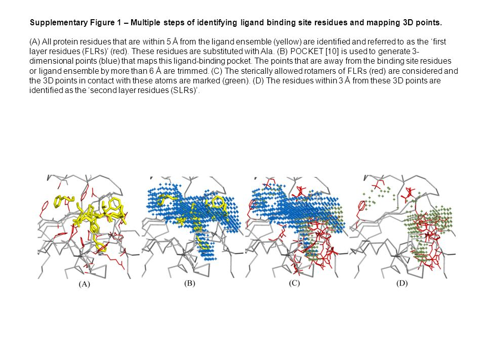 Supplementary Figure 1 – Multiple steps of identifying ligand binding site residues and mapping 3D points.