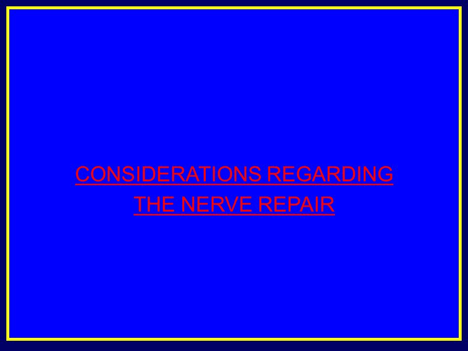 CONSIDERATIONS REGARDING THE NERVE REPAIR