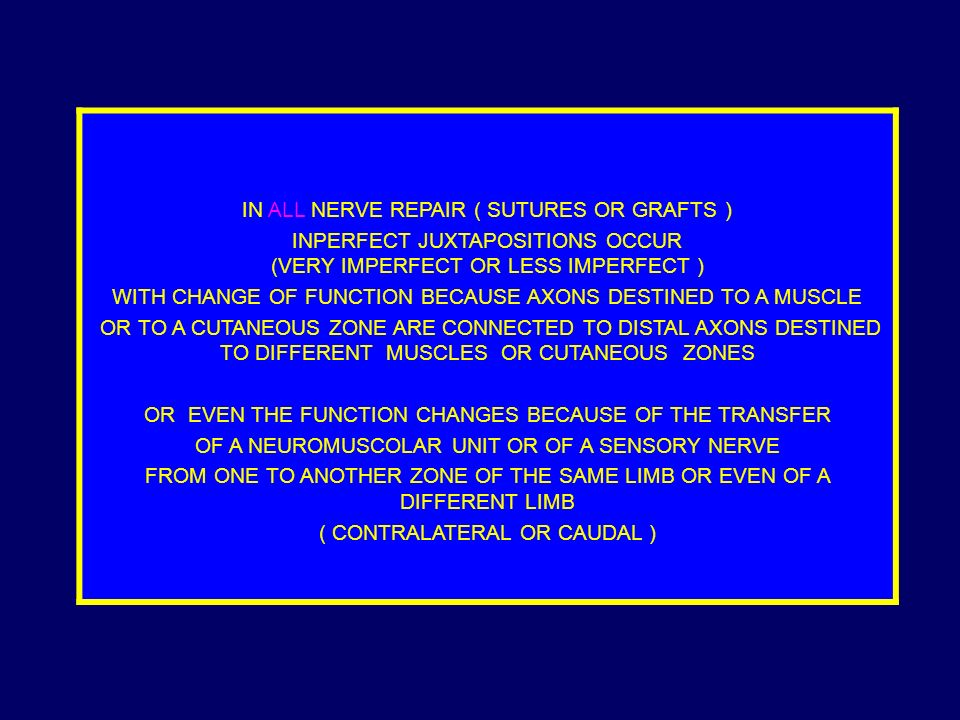 IN ALL NERVE REPAIR ( SUTURES OR GRAFTS ) INPERFECT JUXTAPOSITIONS OCCUR (VERY IMPERFECT OR LESS IMPERFECT ) WITH CHANGE OF FUNCTION BECAUSE AXONS DESTINED TO A MUSCLE OR TO A CUTANEOUS ZONE ARE CONNECTED TO DISTAL AXONS DESTINED TO DIFFERENT MUSCLES OR CUTANEOUS ZONES OR EVEN THE FUNCTION CHANGES BECAUSE OF THE TRANSFER OF A NEUROMUSCOLAR UNIT OR OF A SENSORY NERVE FROM ONE TO ANOTHER ZONE OF THE SAME LIMB OR EVEN OF A DIFFERENT LIMB ( CONTRALATERAL OR CAUDAL )