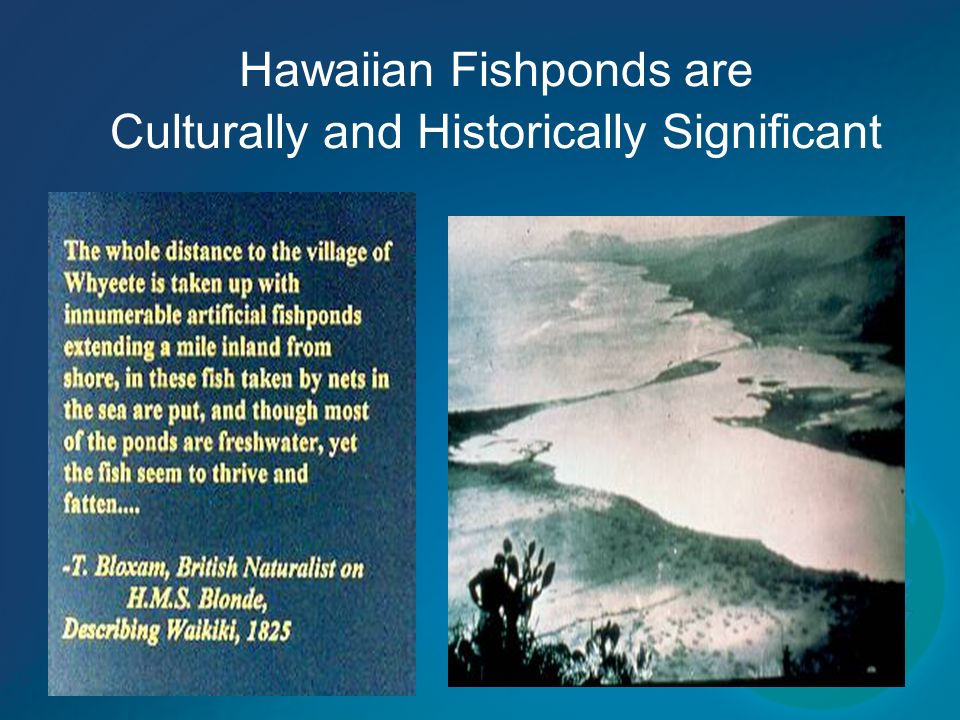 Hawaiian Fishponds are Culturally and Historically Significant