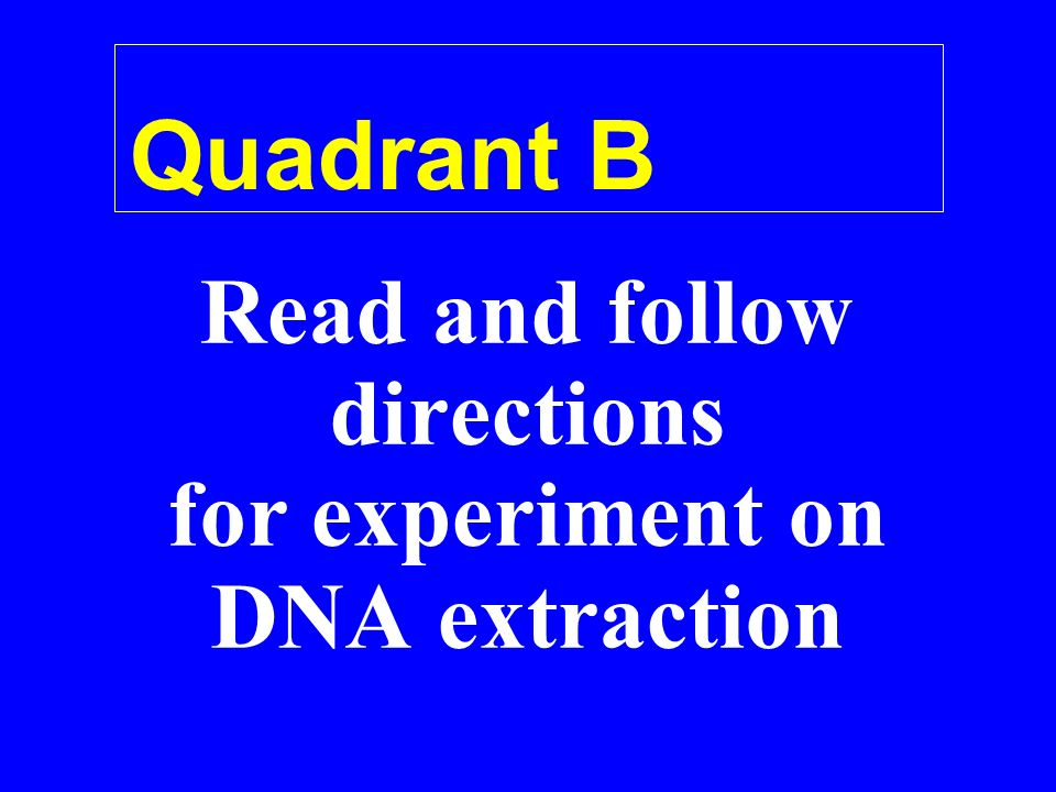 Quadrant B Read and follow directions for experiment on DNA extraction