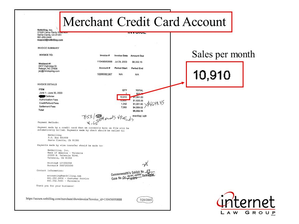 Merchant Credit Card Account Sales per month