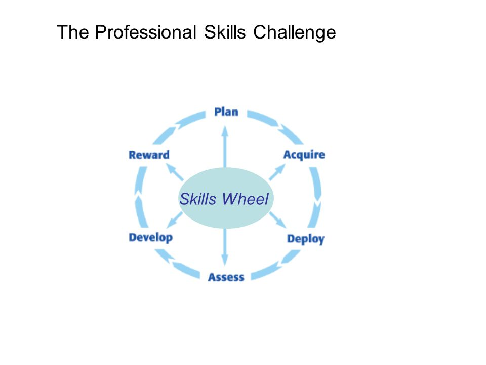 The Professional Skills Challenge Skills Wheel