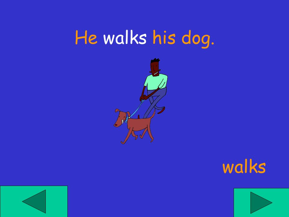 He ___ his dog. walkes walk walks