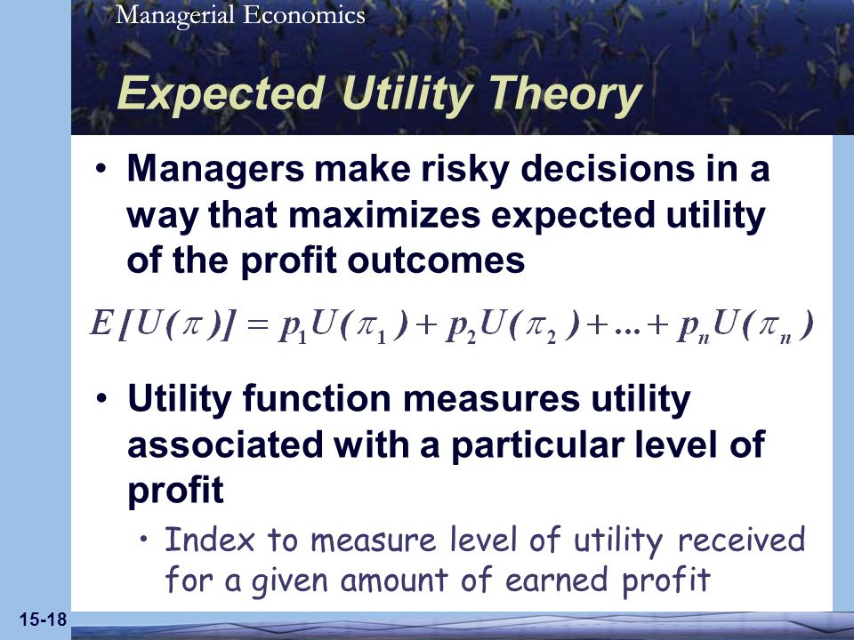 Managerial Economics 15-18 Expected Utility Theory Managers make risky decisions in a way that maximizes expected utility of the profit outcomes Utility function measures utility associated with a particular level of profit Index to measure level of utility received for a given amount of earned profit