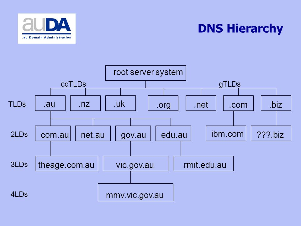DNS Hierarchy TLDs ccTLDsgTLDs root server system 2LDs com.au.au.nz.uk 3LDs net.augov.auedu.au.org.biz.com.net ibm.com vic.gov.aurmit.edu.autheage.com.au 4LDs mmv.vic.gov.au .biz