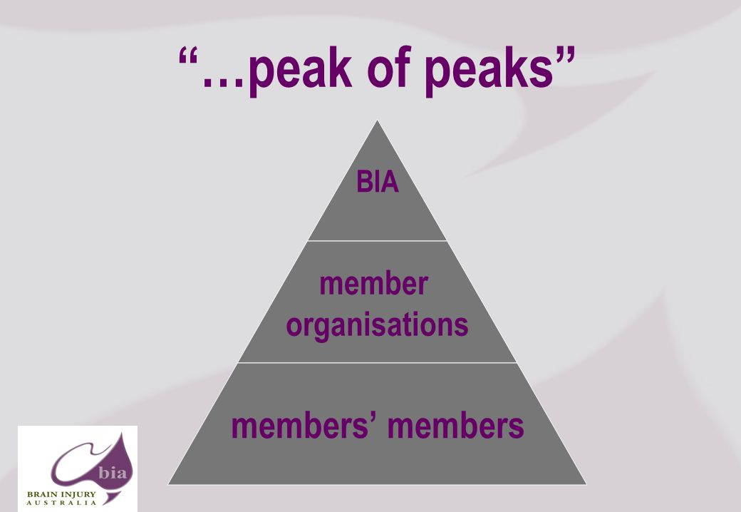 …peak of peaks BIA member organisations members