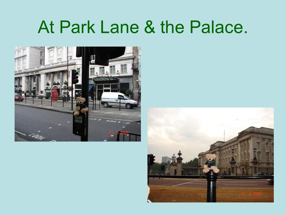 At Park Lane & the Palace.