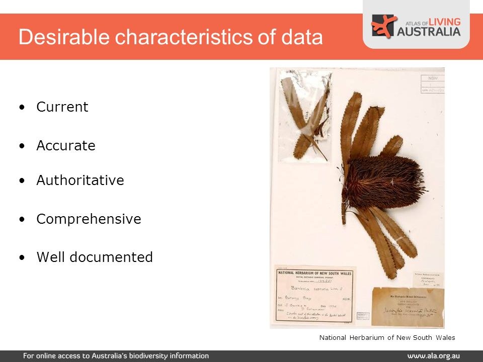 Desirable characteristics of data Current Accurate Authoritative Comprehensive Well documented National Herbarium of New South Wales