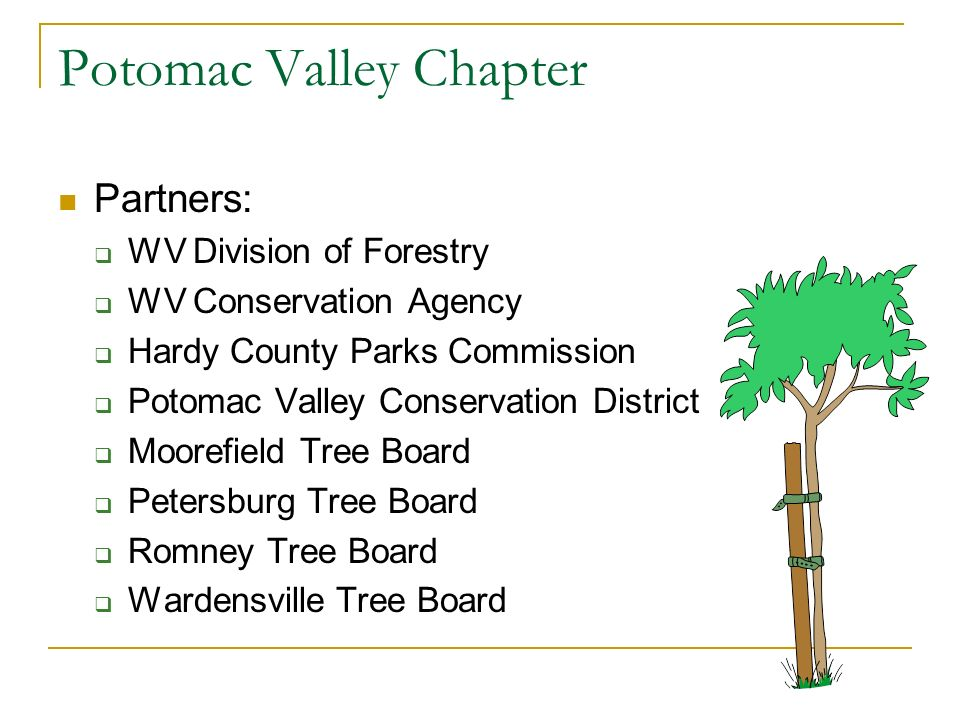 Potomac Valley Chapter Partners: WV Division of Forestry WV Conservation Agency Hardy County Parks Commission Potomac Valley Conservation District Moorefield Tree Board Petersburg Tree Board Romney Tree Board Wardensville Tree Board