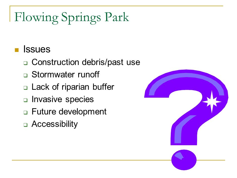 Flowing Springs Park Issues Construction debris/past use Stormwater runoff Lack of riparian buffer Invasive species Future development Accessibility