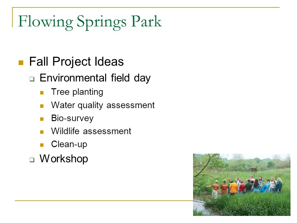 Flowing Springs Park Fall Project Ideas Environmental field day Tree planting Water quality assessment Bio-survey Wildlife assessment Clean-up Workshop