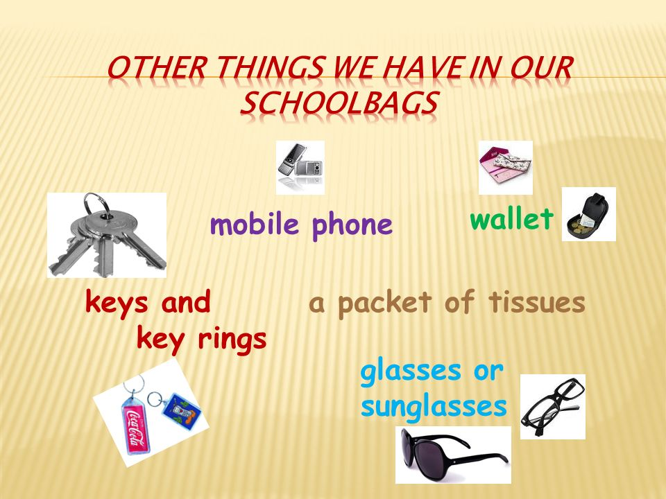 keys and key rings mobile phone wallet glasses or sunglasses a packet of tissues
