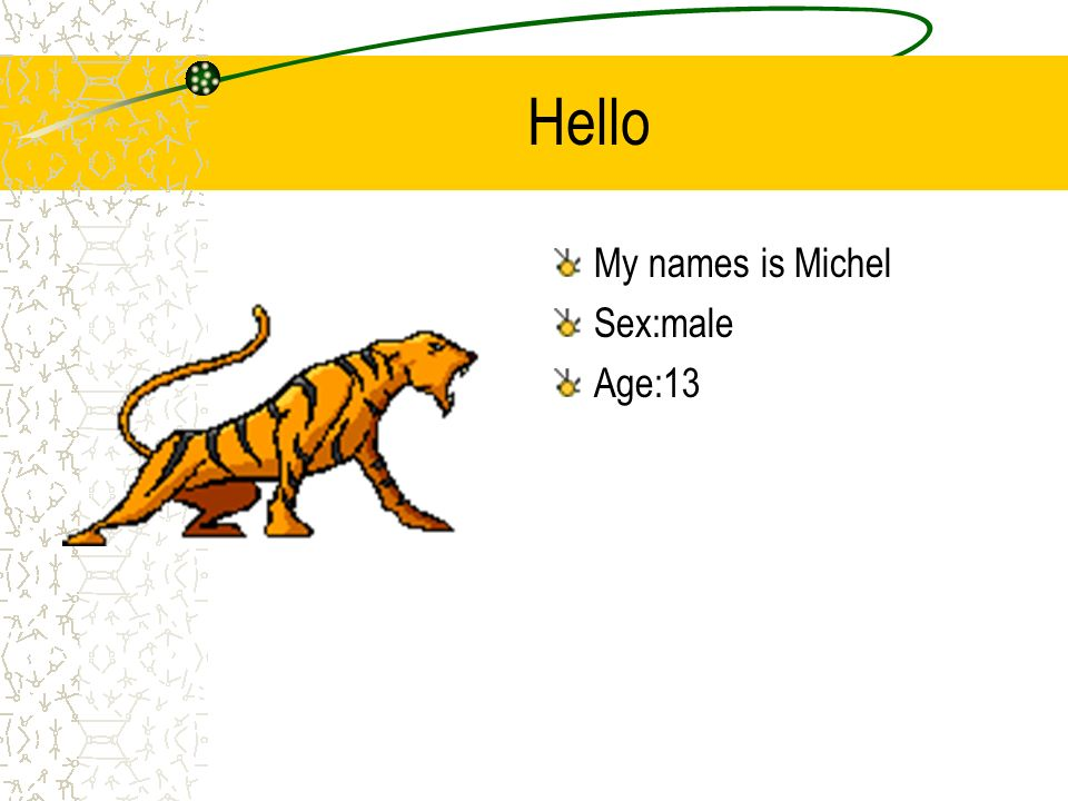 Hello My names is Michel Sex:male Age:13