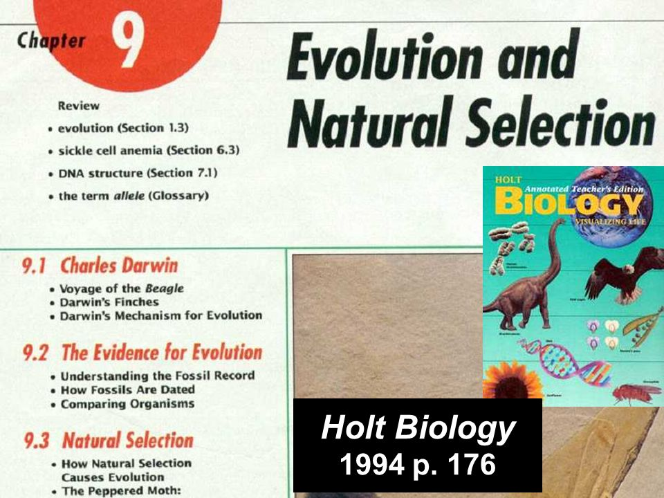 chapter 9 Holt Biology Natural selection causes evolution… (pages are cut out and in suitcase) Holt Biology 1994 p.