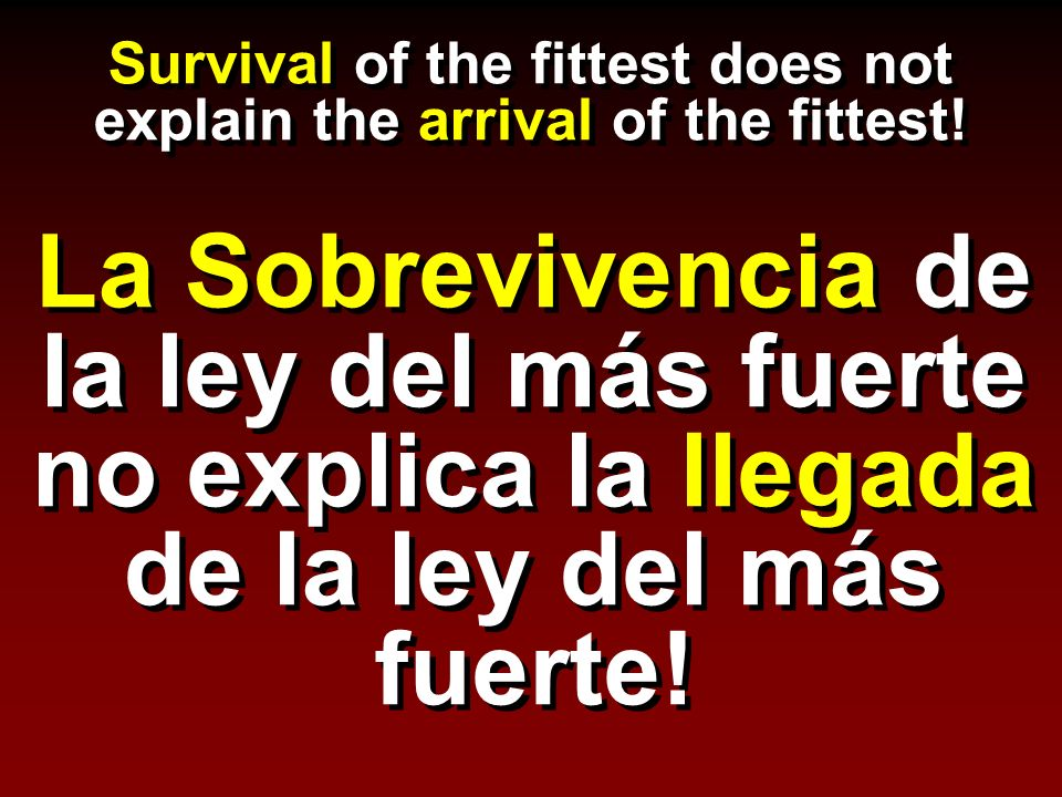 Survival of the fittest does not explain the arrival of the fittest.