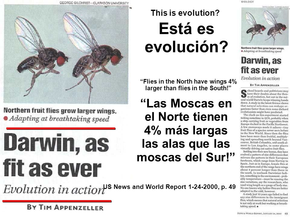 This is evolution. US News and World Report , p.