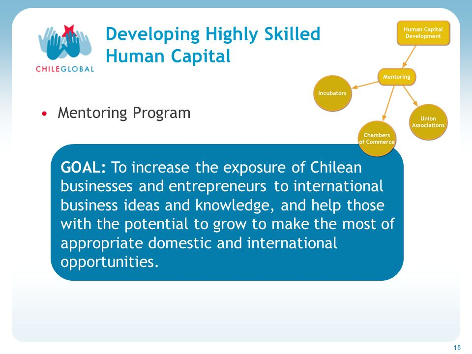 Haga clic para cambiar el estilo de títu 18 Developing Highly Skilled Human Capital Mentoring Program GOAL: To increase the exposure of Chilean businesses and entrepreneurs to international business ideas and knowledge, and help those with the potential to grow to make the most of appropriate domestic and international opportunities.