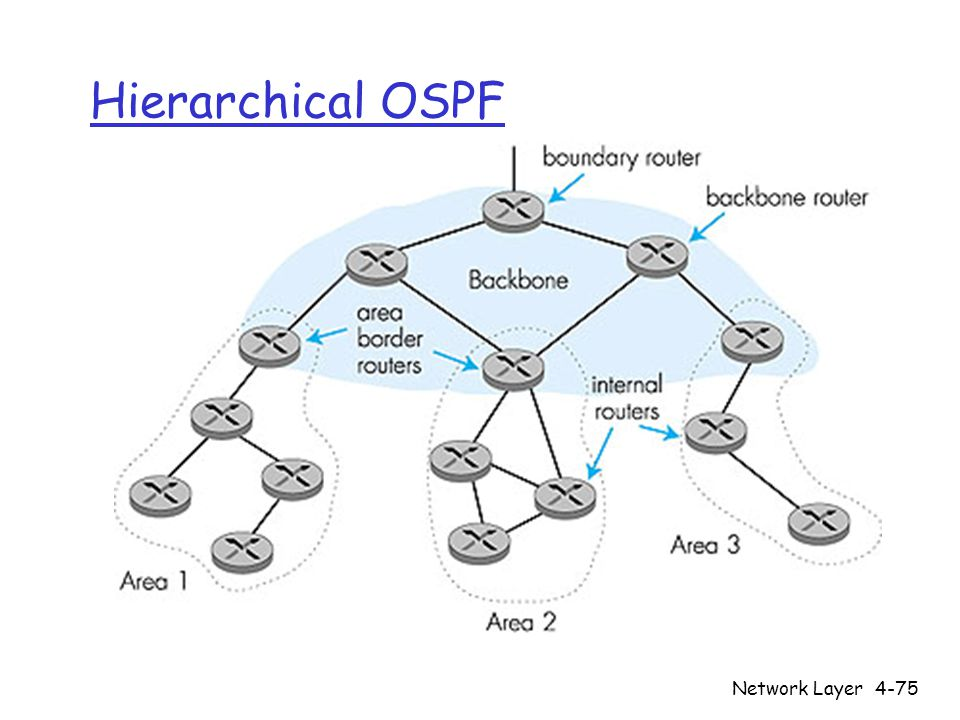 Network Layer4-75 Hierarchical OSPF