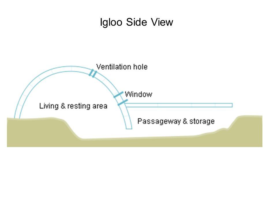 The Igloo A Dome Of Many Wonders Outline Igloo Basics Igloo Science