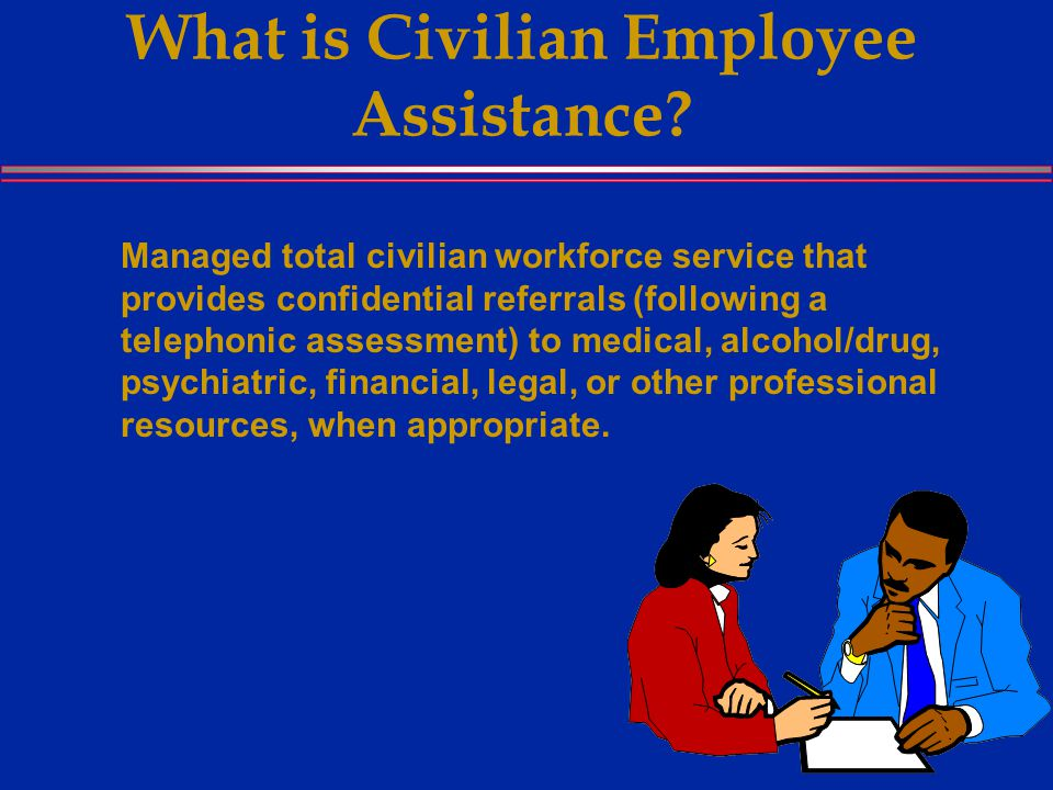 What is Civilian Employee Assistance.