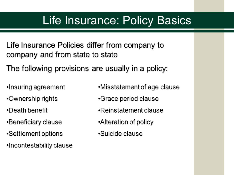 Life Insurance Policy Basics Life Insurance Policies Differ From