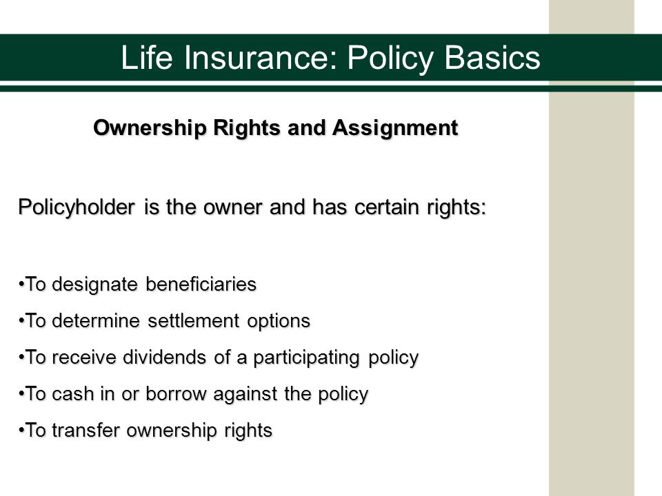 essay on life insurance Life insurance refers to the protective cover on the life of the individual insured and provision of financial benefits in case of loss of life of that individual within a certain period it must be understood that life is pretty unpredictable and one needs to be prepared to meet all unforeseen events.