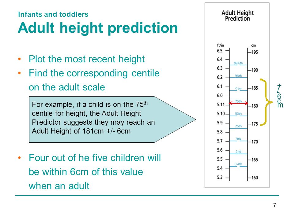 Infants and toddlers 7 Adult height prediction Plot the most recent height Find the corresponding centile on the adult scale Four out of he five children will be within 6cm of this value when an adult For example, if a child is on the 75 th centile for height, the Adult Height Predictor suggests they may reach an Adult Height of 181cm +/- 6cm