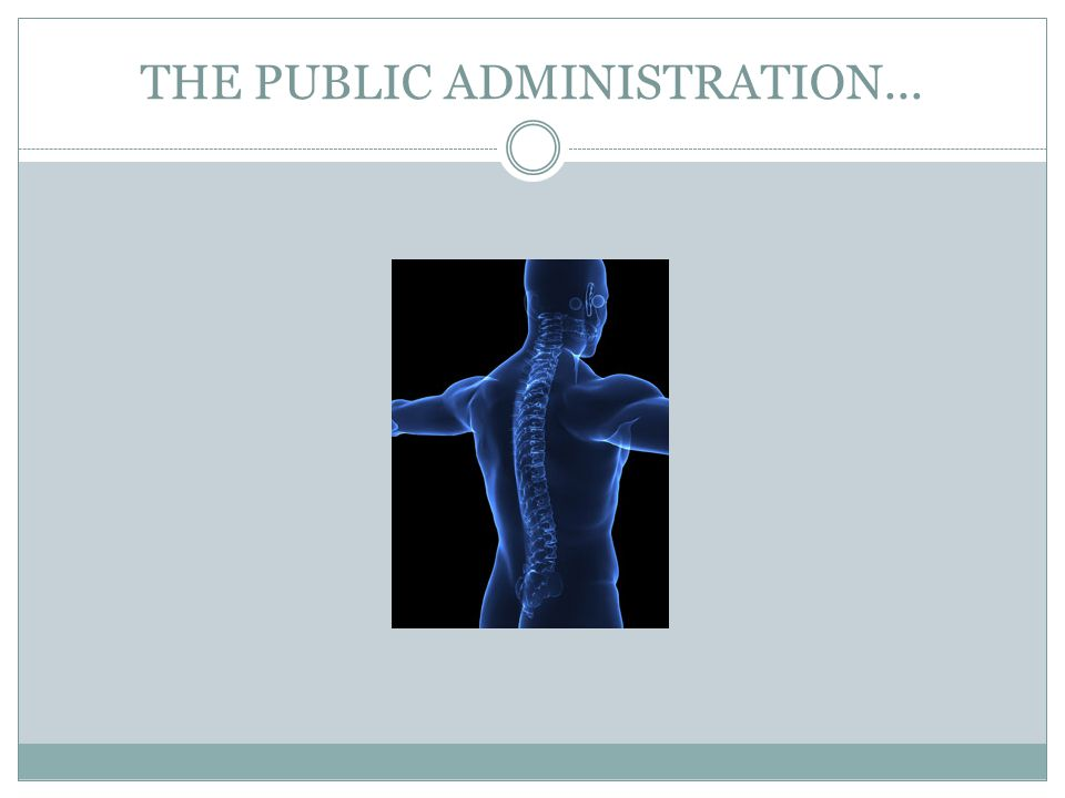 THE PUBLIC ADMINISTRATION...