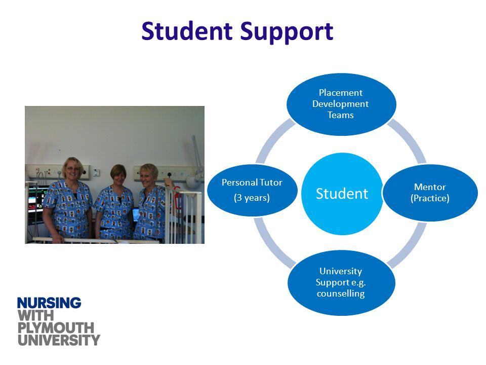 Student Support Student Placement Development Teams Mentor (Practice) University Support e.g.
