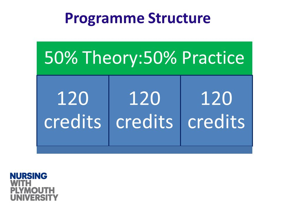 Programme Structure 50% Theory:50% Practice 120 credits