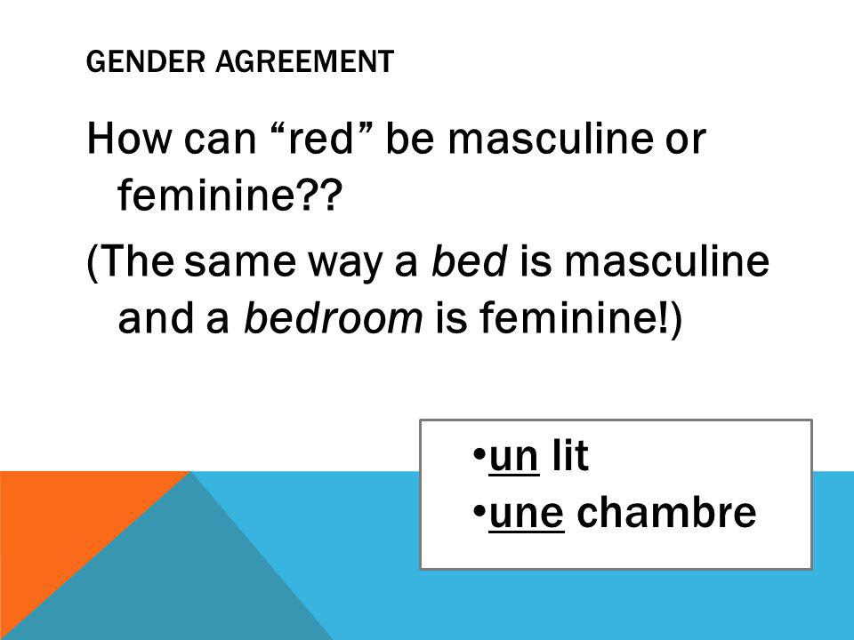 GENDER AGREEMENT How can red be masculine or feminine .