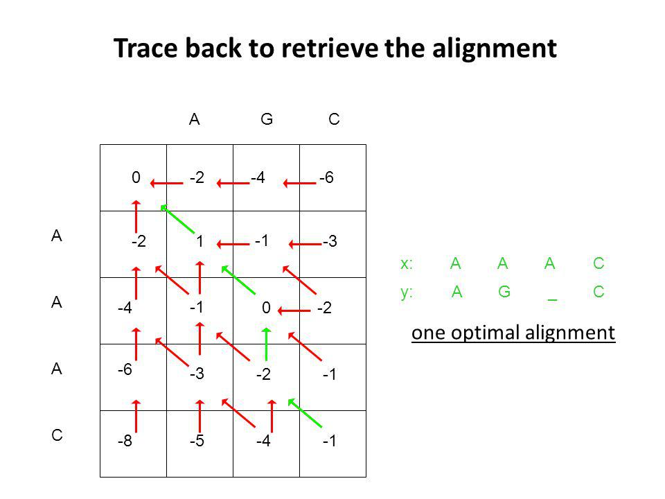 Trace back to retrieve the alignment A -2 A -4 CAG A -6 C x: y: one optimal alignment C C A _ A G A A