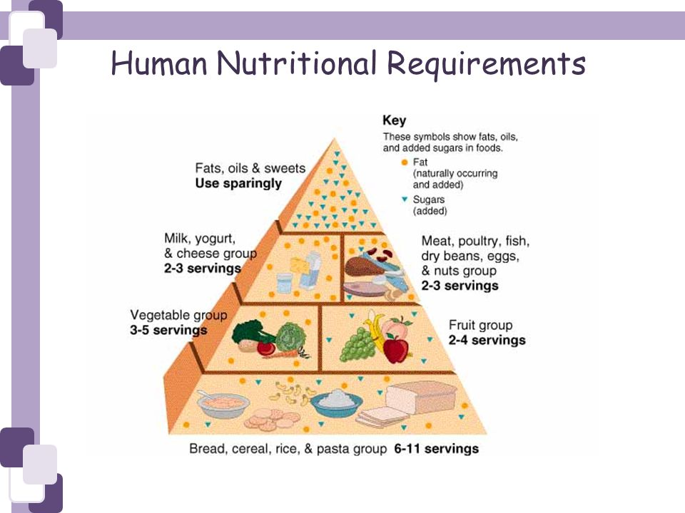 Human Nutritional Requirements