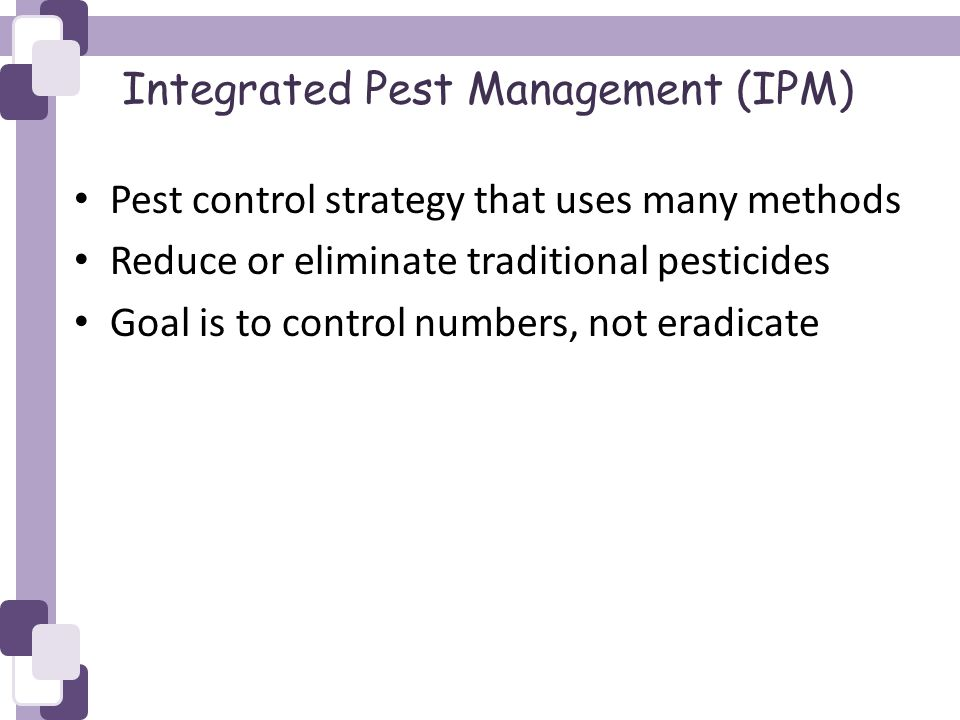 Integrated Pest Management (IPM) Pest control strategy that uses many methods Reduce or eliminate traditional pesticides Goal is to control numbers, not eradicate