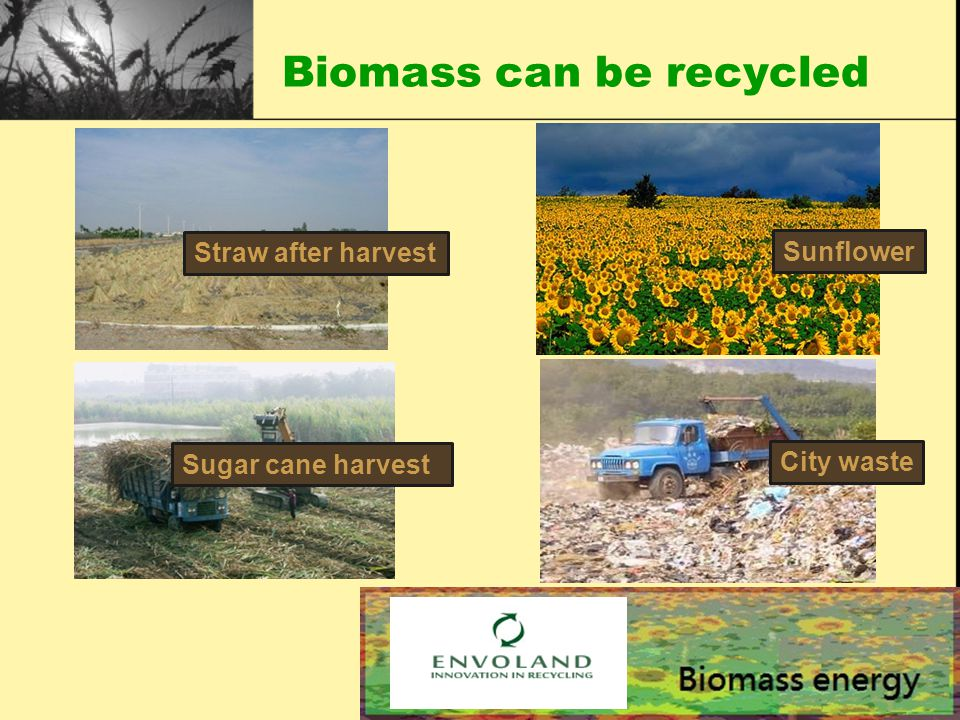 Biomass can be recycled ) Straw after harvest Sunflower Sugar cane harvest City waste