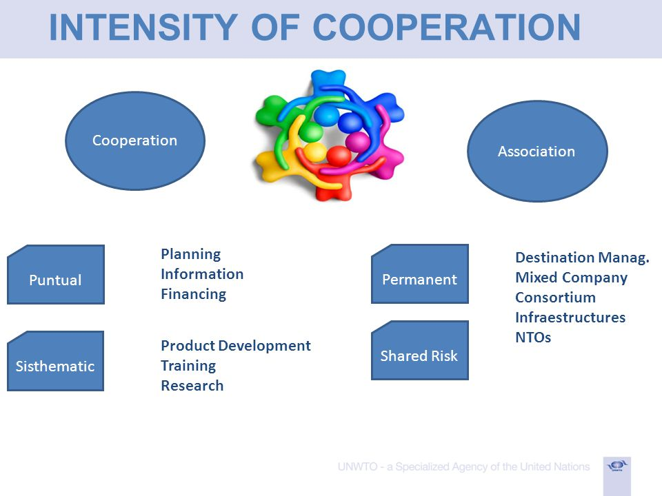 INTENSITY OF COOPERATION Cooperation Association Puntual Sisthematic Permanent Shared Risk Planning Information Financing Product Development Training Research Destination Manag.