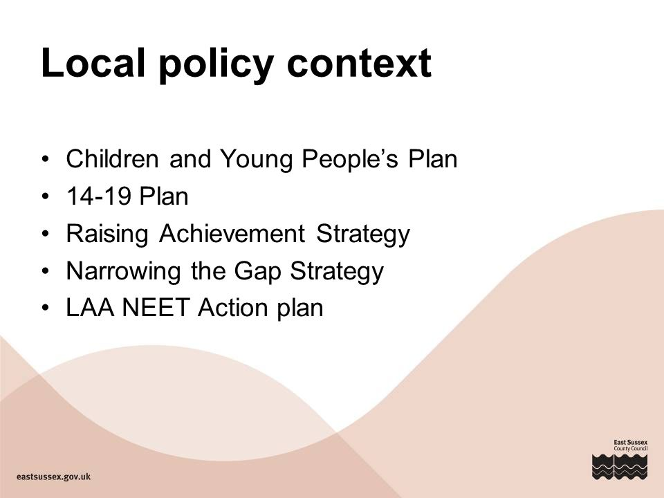 Local policy context Children and Young People's Plan Plan Raising Achievement Strategy Narrowing the Gap Strategy LAA NEET Action plan