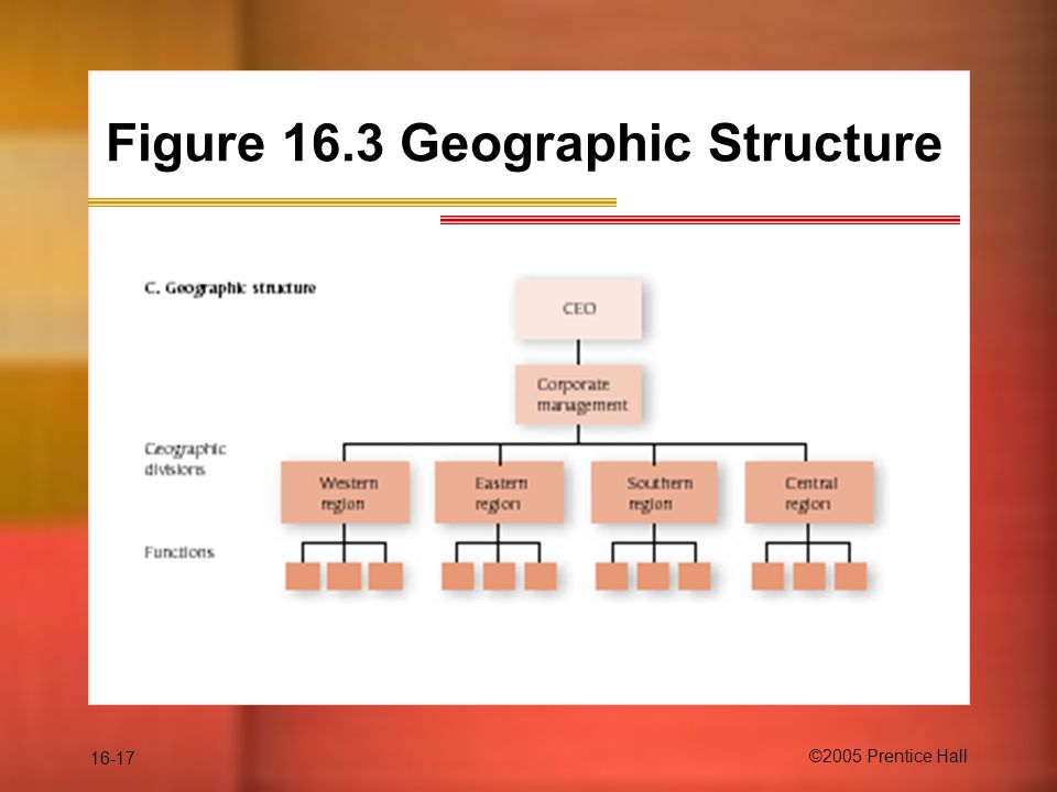 16-17 ©2005 Prentice Hall Figure 16.3 Geographic Structure