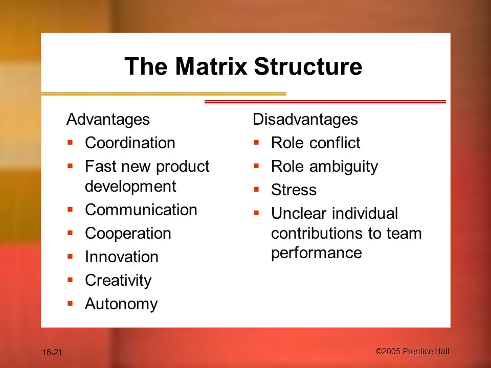 16-21 ©2005 Prentice Hall The Matrix Structure Advantages  Coordination  Fast new product development  Communication  Cooperation  Innovation  Creativity  Autonomy Disadvantages  Role conflict  Role ambiguity  Stress  Unclear individual contributions to team performance