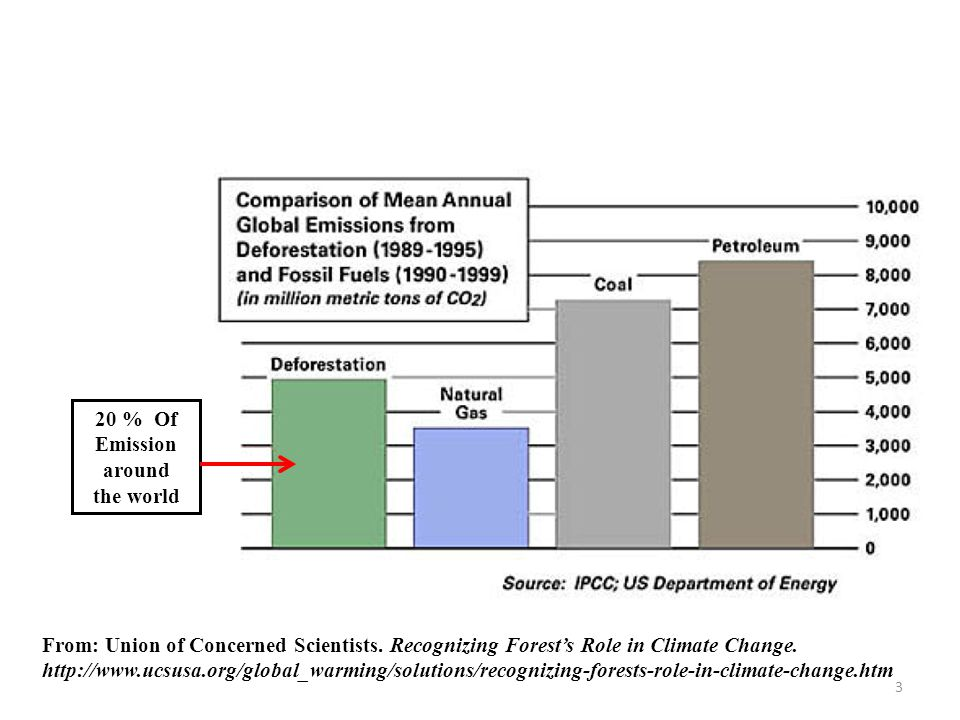 From: Union of Concerned Scientists. Recognizing Forest's Role in Climate Change.