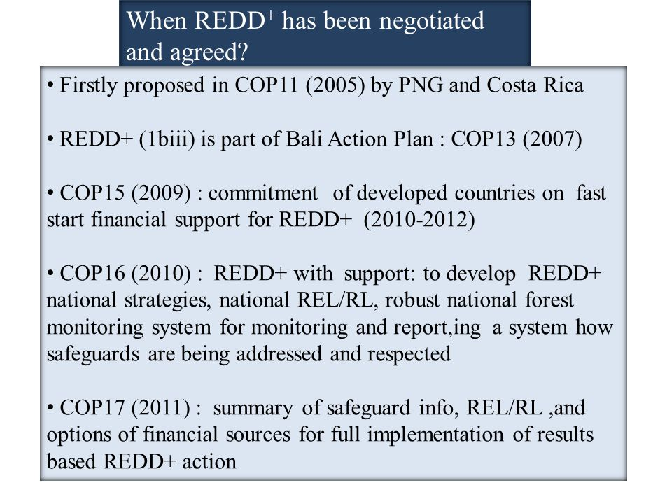 When REDD + has been negotiated and agreed.