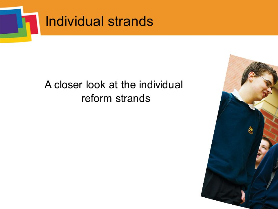 Individual strands A closer look at the individual reform strands