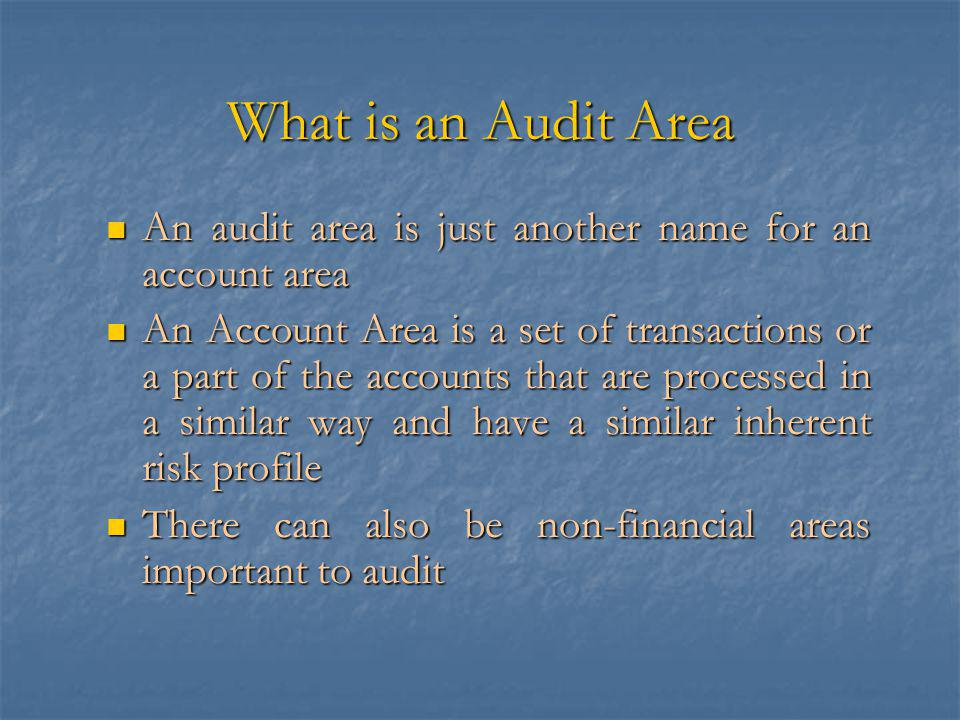What is an Audit Area An audit area is just another name for an account area An audit area is just another name for an account area An Account Area is a set of transactions or a part of the accounts that are processed in a similar way and have a similar inherent risk profile An Account Area is a set of transactions or a part of the accounts that are processed in a similar way and have a similar inherent risk profile There can also be non-financial areas important to audit There can also be non-financial areas important to audit