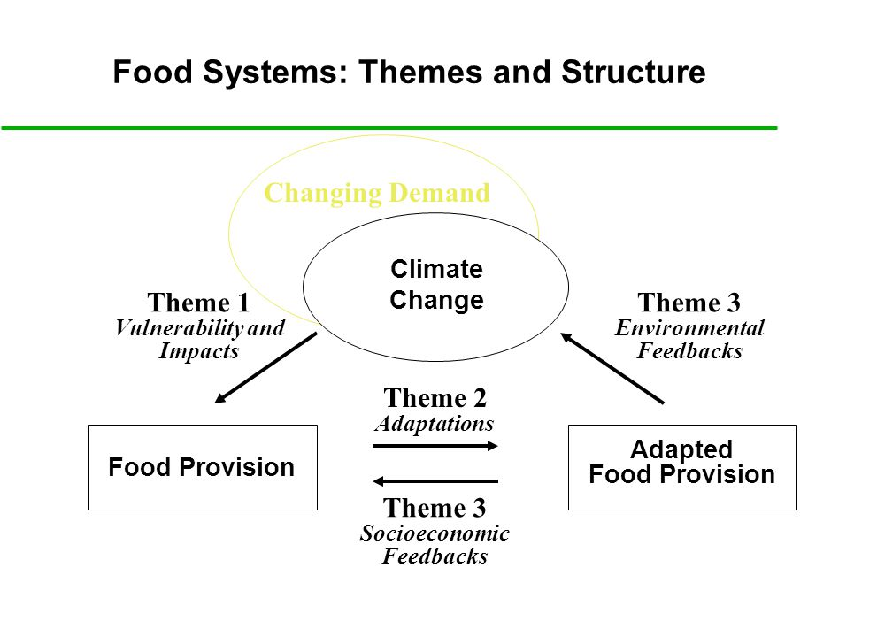 Climate Change Food Provision Theme 1 Vulnerability and Impacts Theme 2 Adaptations Adapted Food Provision Theme 3 Environmental Feedbacks Changing Demand Theme 3 Socioeconomic Feedbacks Food Systems: Themes and Structure