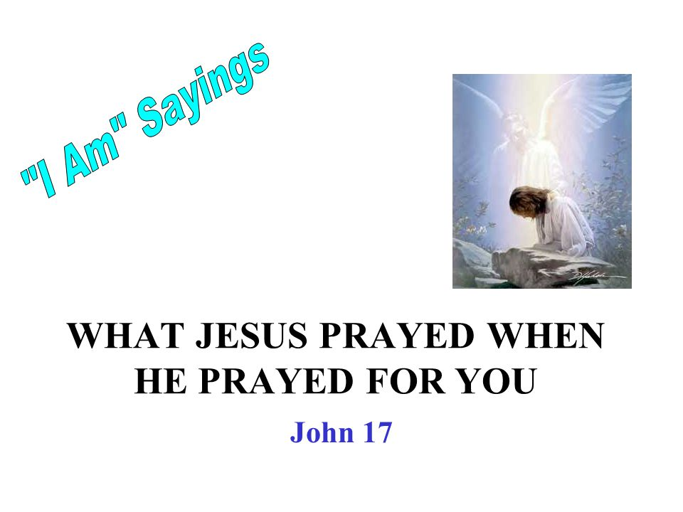 WHAT JESUS PRAYED WHEN HE PRAYED FOR YOU John 17