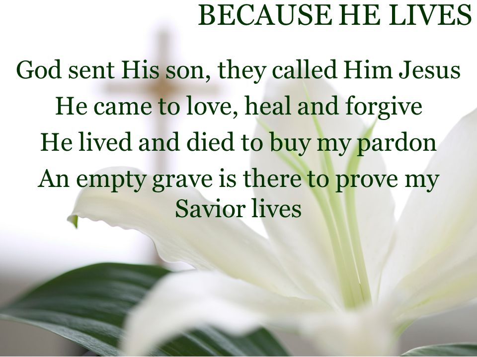 BECAUSE HE LIVES God sent His son, they called Him Jesus He came to love, heal and forgive He lived and died to buy my pardon An empty grave is there to prove my Savior lives
