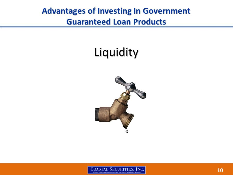 10 Advantages of Investing In Government Guaranteed Loan Products Liquidity